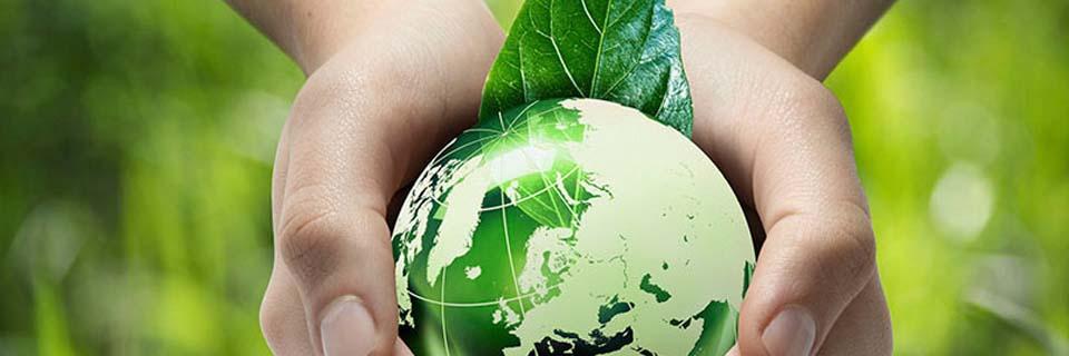 Environmentally Conscious Oriented | Moderco